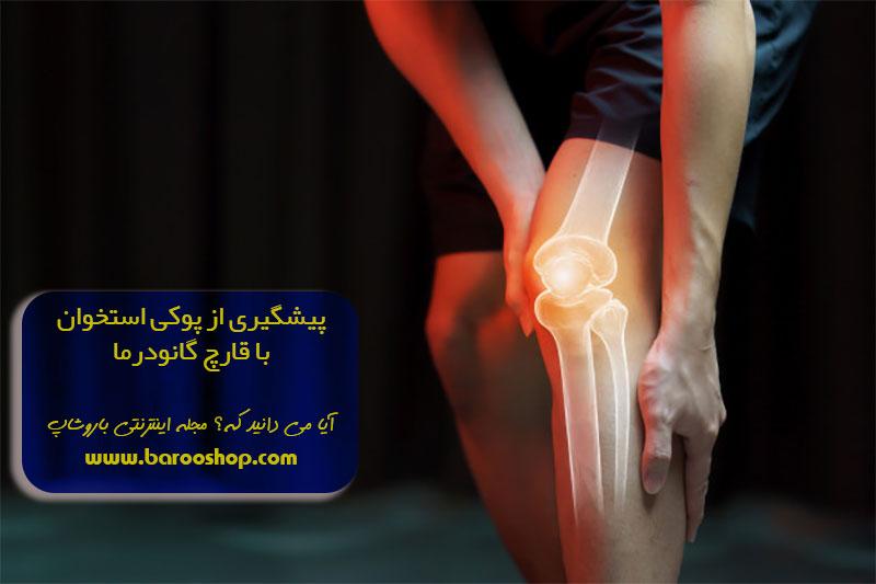 پیشگیری-از-پوکی-استخوان-با-قارچ-گانودرما1