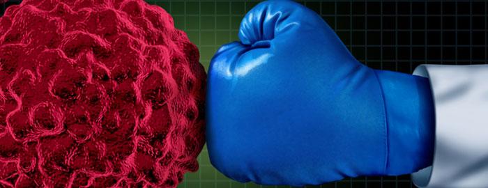 ساختار سیستم ایمنی بدن، سیستم ایمنی بدن، ضعف ایمنی بدن، طحال، غدد لنفاوی، مغز استخوان